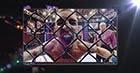 UFC Select 1 FEAT