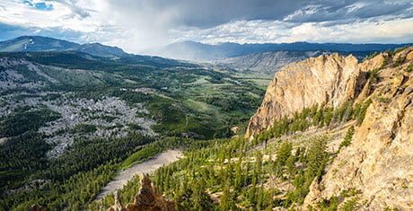 Nat Geo to explore Yellowstone Live | News | C21Media