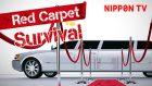 Red Carpet Survival