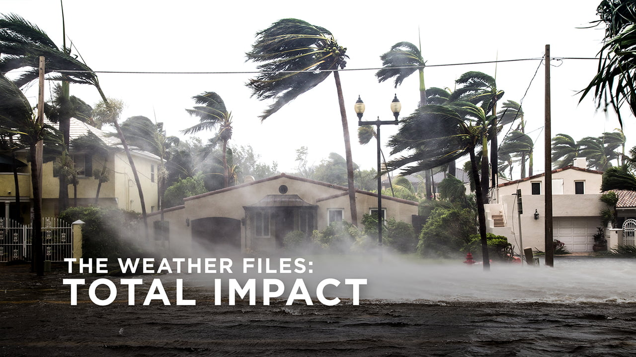 The Weather Files: Total Impact